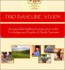 Trio Baseline Study