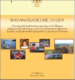Wayana Baseline Study