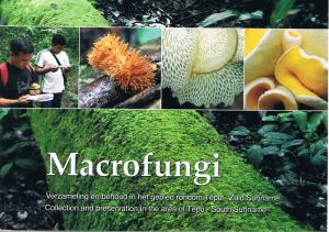 Macrofungi