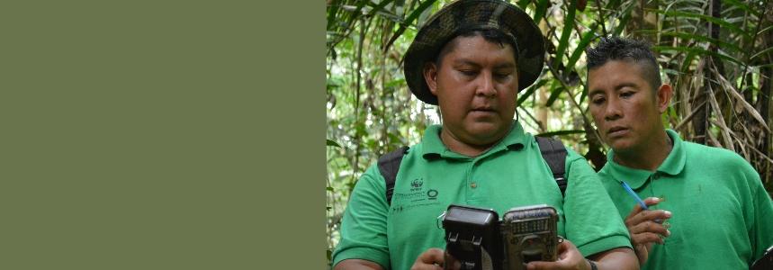 Cameratrap