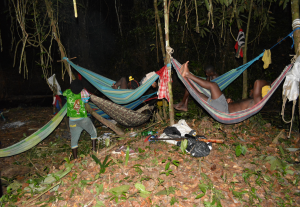 Overnachten in het oerwoud