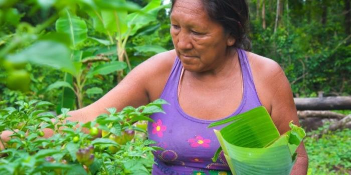 ACT-Suriname en Wereld Voedsel Dag
